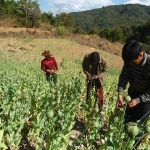 Opium, Logging and Gas: The Burma Army's Predatory Rule Over the People of Burma