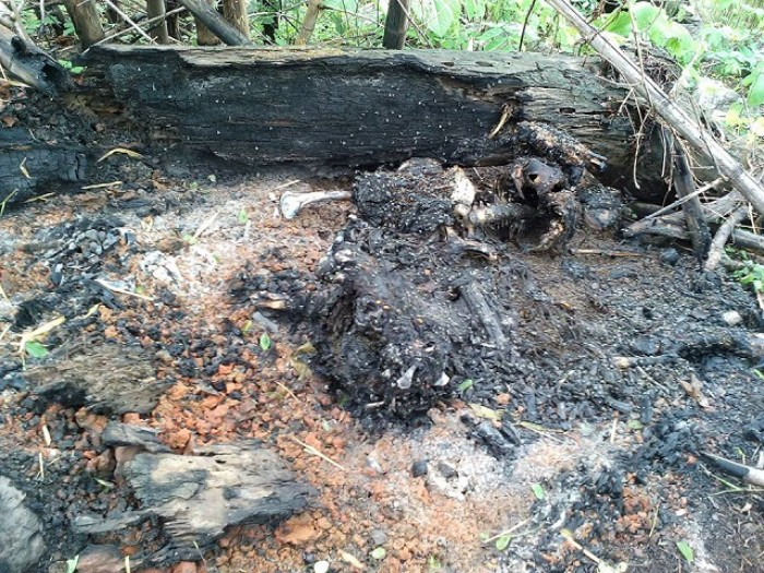 Charred human remains found after clashes in northern Shan
